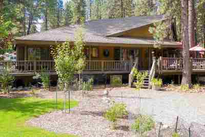 Single Family Home For Sale: 47 Shasta Trail