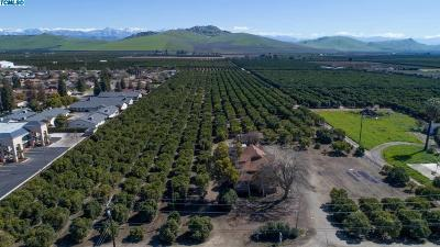 Tulare County Residential Lots & Land For Sale: 986 S Kaweah Avenue