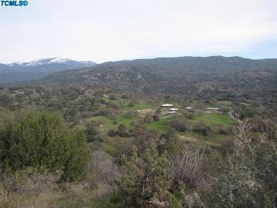Residential Lots & Land For Sale: Dry Creek Drive