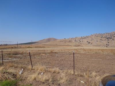 Tulare County Residential Lots & Land For Sale: Olive