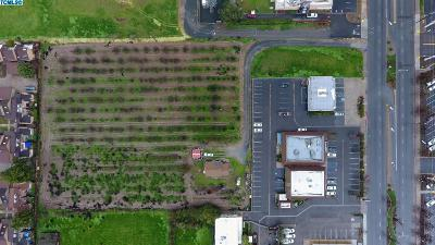 Commercial For Sale: 1106 W Henderson Avenue