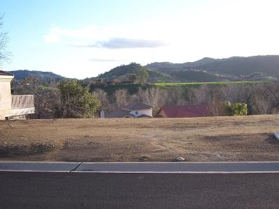 Tulare County Residential Lots & Land For Sale: Greene (Lot 41) Dr.