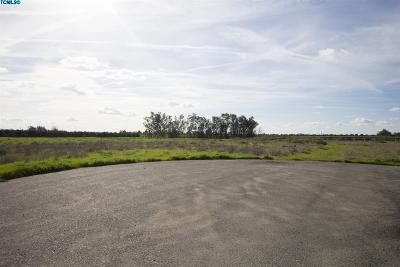 Tulare County Residential Lots & Land For Sale: Newcomb