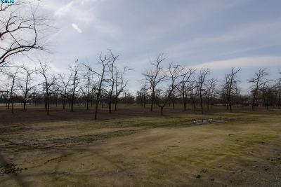 Tulare County Residential Lots & Land For Sale: Road 208