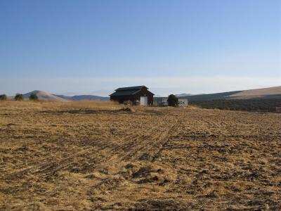 Tulare County Residential Lots & Land For Sale: 10056 Road 264 Road