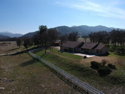 Springville Single Family Home For Sale: 39202 Balch Park Road