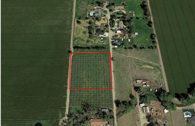 Tulare Residential Lots & Land For Sale: Avenue 224