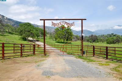 Springville Single Family Home For Sale: 41230 Yokohl Valley Drive