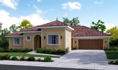 Visalia Single Family Home For Sale: 6510 W Lark