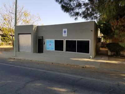 Tulare County Commercial For Sale: 238 S Mirage Avenue