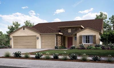 Visalia Single Family Home For Sale: 1726 Green Street