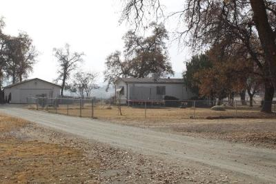 Springville Single Family Home For Sale: 32821 Highway 190