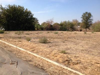 Tulare County Residential Lots & Land For Sale: E Success Drive