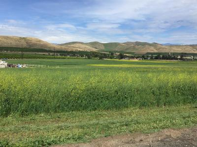 Tulare County Residential Lots & Land For Sale: E Scenic Drive