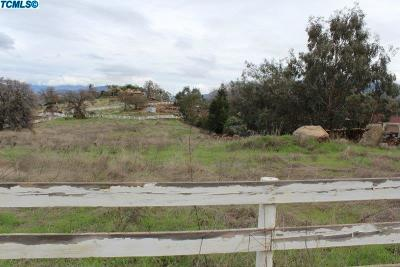 Tulare County Residential Lots & Land For Sale: 16754 Coyote Drive
