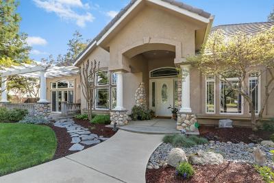 Visalia Single Family Home For Sale: 5343 W Grove Court