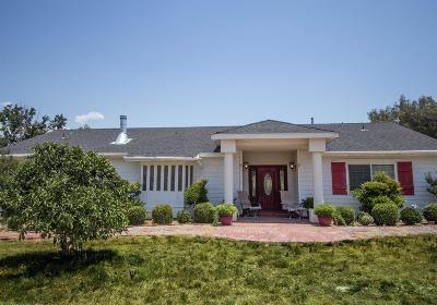Springville Single Family Home For Sale: 34750 Bogart Drive