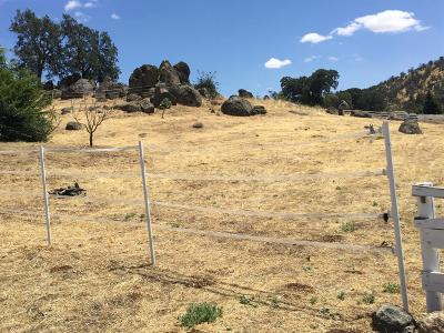 Tulare County Residential Lots & Land For Sale: 16687 Thomas Drive