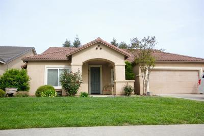 Visalia Single Family Home For Sale: 166 N Preston Street