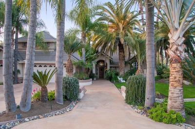 Visalia Single Family Home For Sale: 5840 W Sweet Drive