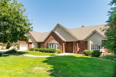 Tulare County Single Family Home For Sale: 19799 Campbell Creek Drive