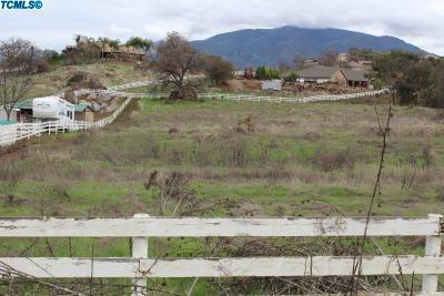 Tulare County Residential Lots & Land For Sale: 16730 Coyote Drive