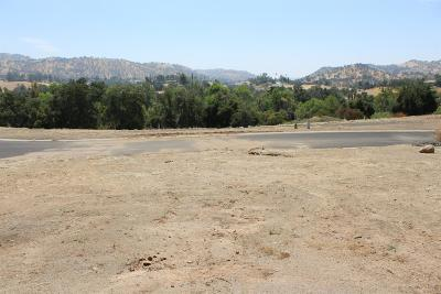Tulare County Residential Lots & Land For Sale: 32544 Greene