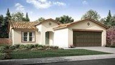 Visalia Single Family Home For Sale: 447 E Dove Avenue