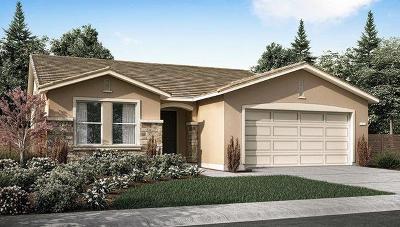Visalia Single Family Home For Sale: 435 E Dove Avenue