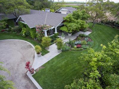 Dinuba Single Family Home For Sale: 40768 Road 74