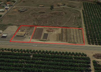 Tulare County Commercial For Sale: 21661 Avenue 296 Avenue