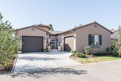 Tulare County Single Family Home For Sale: 606 Little Lane Drive