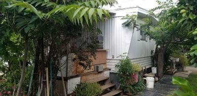 Tulare County Single Family Home For Sale: 1772 E Springville Avenue