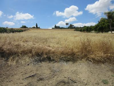 Tulare County Residential Lots & Land For Sale: 454 High Sierra Drive #130