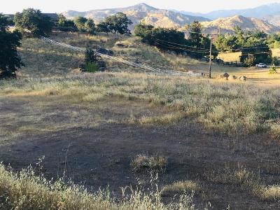 Tulare County Residential Lots & Land For Sale: Burk Court