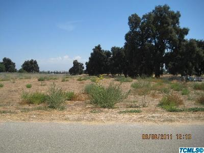 Tulare County Residential Lots & Land For Sale: American Avenue