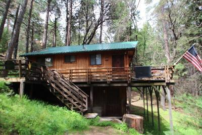Pierpoint Springs, Camp Nelson, Cedar Slope, Alpine Village, Sequoia Crest, Ponderosa Single Family Home For Sale: 329 Mariposa Drive