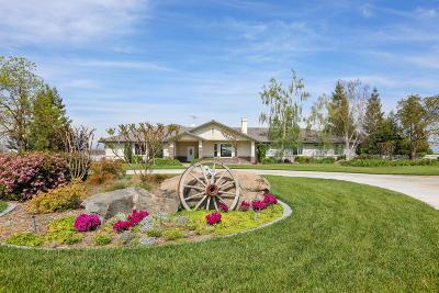Tulare Single Family Home For Sale: 13404 Avenue 256