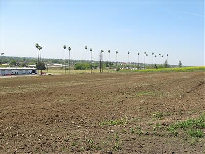 Tulare County Residential Lots & Land For Sale: 1200 N Main Street