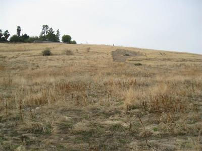Porterville CA Residential Lots & Land For Sale: $240,000