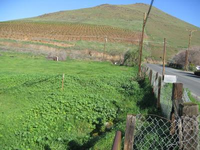 Porterville CA Residential Lots & Land For Sale: $97,500