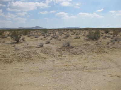 Barstow CA Residential Lots & Land For Sale: $55,000