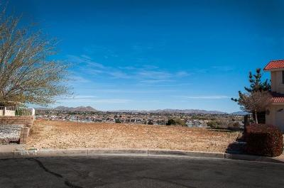 Victorville Residential Lots & Land For Sale: Joshua Tree Lane