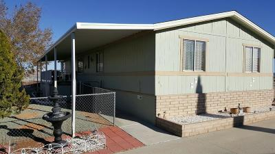 Barstow Mobile/Manufactured For Sale: 2494 W Main Street #165