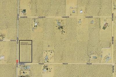 Apple Valley Residential Lots & Land For Sale: 10953 Milpas Drive
