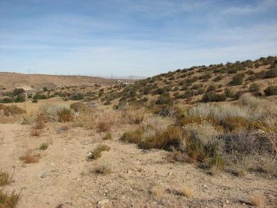 Hesperia Residential Lots & Land For Sale: Perch Place