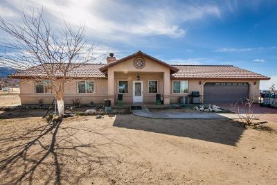 Pinon Hills Single Family Home For Sale: 11730 Desert View Road
