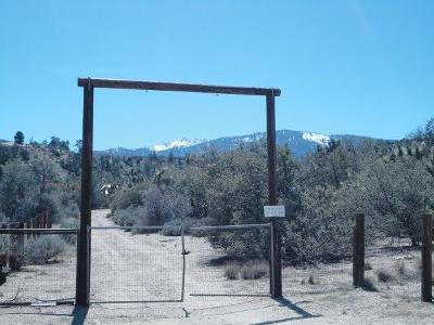 Wrightwood Residential Lots & Land For Sale: 7972 Highway 138