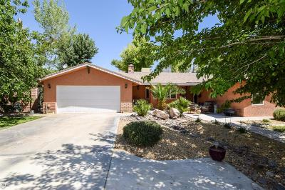 Barstow Single Family Home For Sale: 31582 Clay River Road