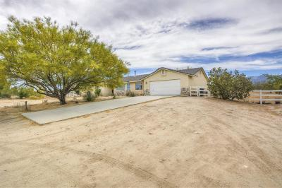 Pinon Hills Single Family Home For Sale: 1413 Sierra Road